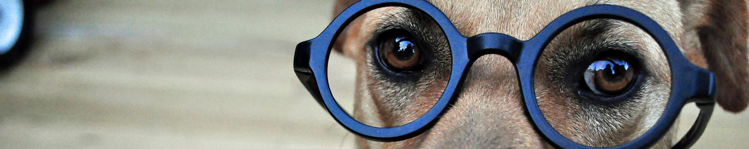 Andere brillen